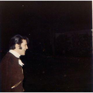 Image result for Elvis Presley, november 20 1968
