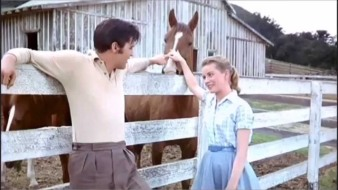 elvis-and-hart-farm